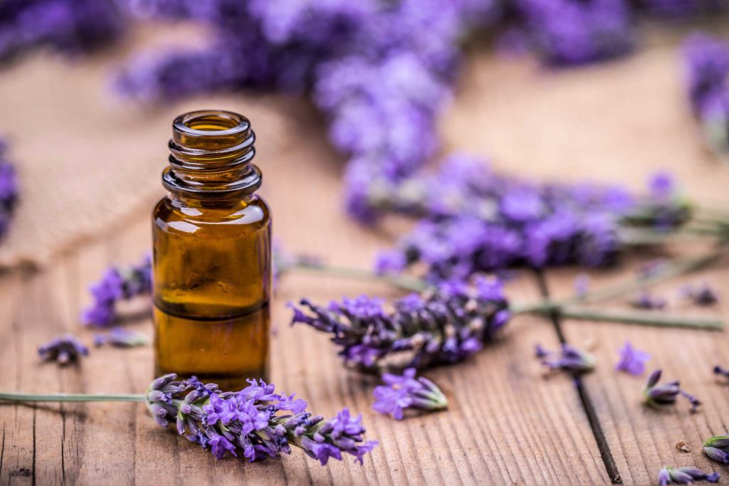 lavender-oil-for-hair-and-skin-benefits.jpg